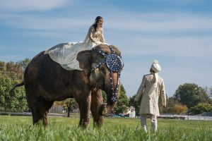 st_louis_wedding_photography_ ray_prop (7 of 8)
