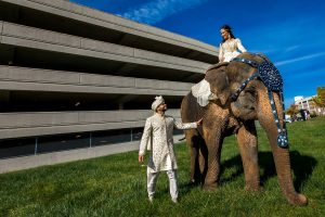 the_ritz_carlton_st_louis_wedding_photography_ray_prop (3 of 10)