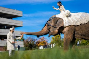the_ritz_carlton_st_louis_wedding_photography_ray_prop (5 of 10)